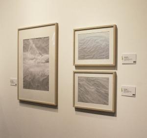 Dettagli in rilievo - Photography and tracing paper
