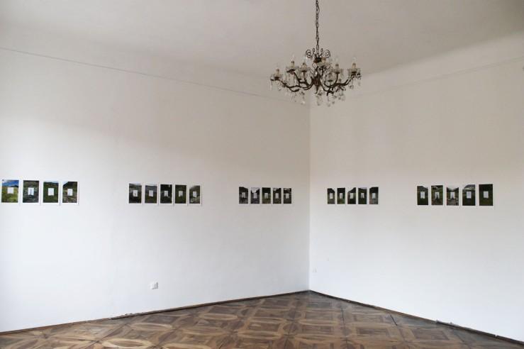 Lucia Pizzinato, Herbarium, 2013-2014